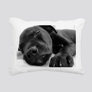 3-DSC00965 B Rectangular Canvas Pillow