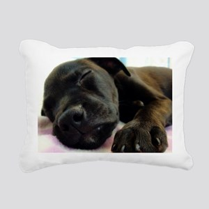 3-DSC00965 Rectangular Canvas Pillow