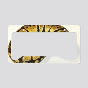 Lemon Pastel Ball Python License Plate Holder