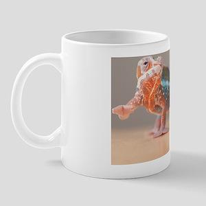 13-march Mug