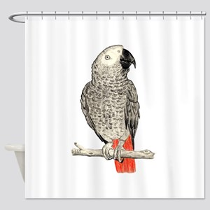 African Grey in Pencil Shower Curtain