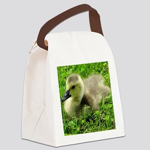 BabyGoose2004 Canvas Lunch Bag