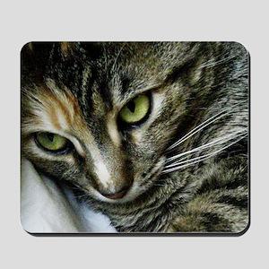 Zen2WM Mousepad