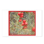 Cactus Country Holiday Postcards (Package of 8)