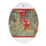 Cactus Country Holiday Oval Ornament