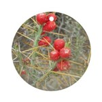 Cactus Country Holiday Ornament (Round)