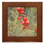 Cactus Country Holiday Framed Tile