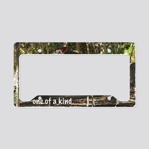 One of a kind License Plate Holder