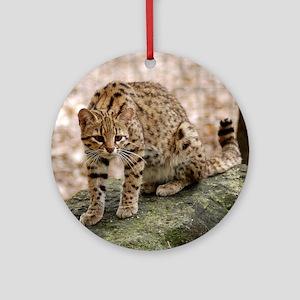 geoffroy-cat-001 Round Ornament
