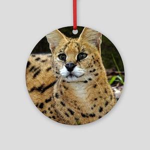 serval 015 Round Ornament