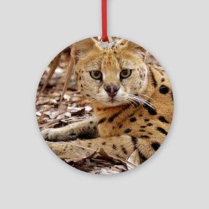 serval 025 Round Ornament