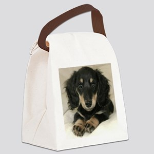 long hair black doxie 16x16 Canvas Lunch Bag