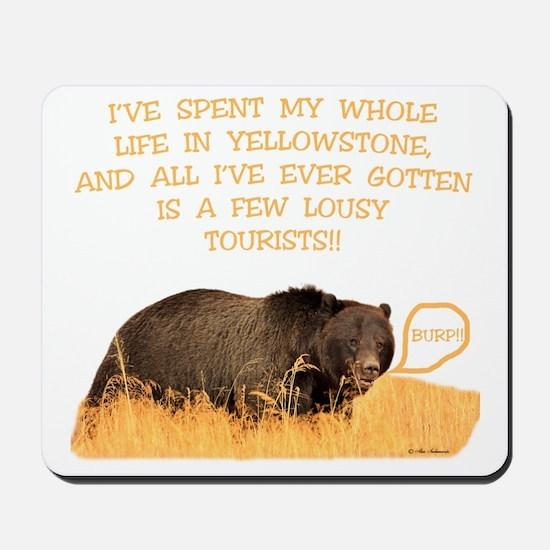 Yellowstone griz b Mousepad