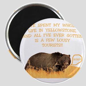 Yellowstone griz b Magnet