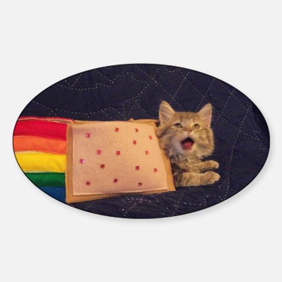 IRL Nyan Pop-Tart Cat  Sticker (Oval)