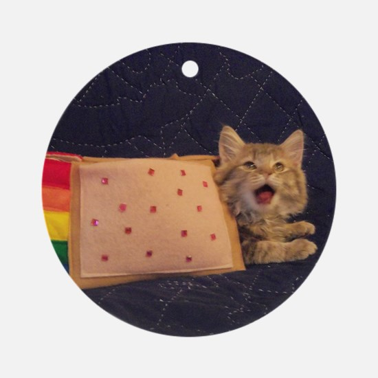 IRL Nyan Pop-Tart Cat  Round Ornament