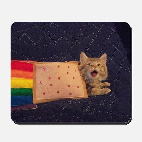 IRL Nyan Pop-Tart Cat  Mousepad