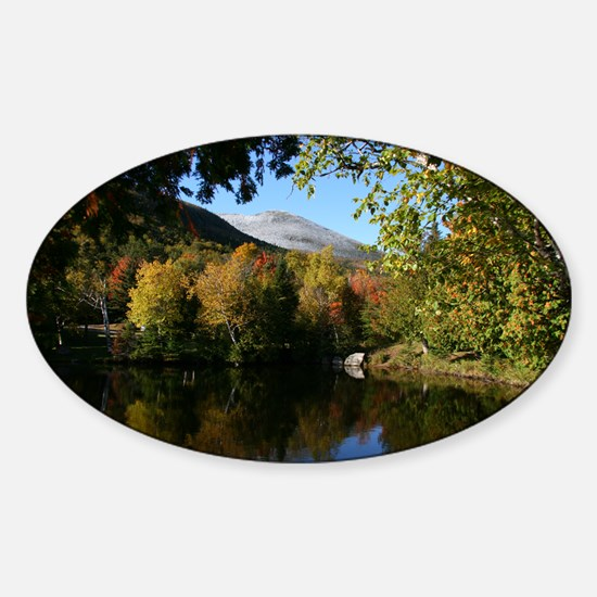 Whiteface P mini poster Sticker (Oval)