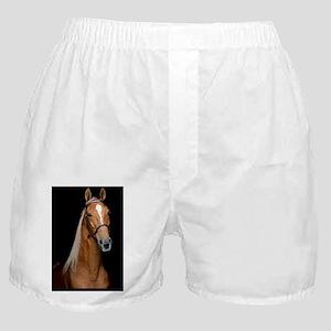 sorrel_button Boxer Shorts