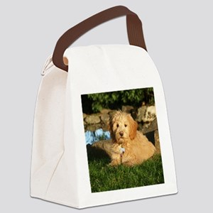00cover wildeshots-020910 088b Canvas Lunch Bag