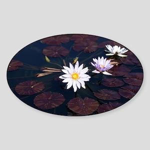 Botanical1 Sticker (Oval)