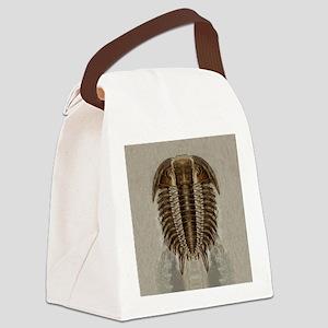 trilobite2symIPd Canvas Lunch Bag