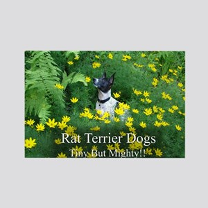 rat_terrier_flowers Rectangle Magnet