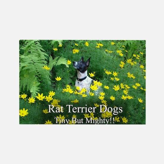 rat_terrier_flowers Rectangle Magnet