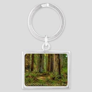 redwoods Landscape Keychain