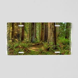 redwoods Aluminum License Plate