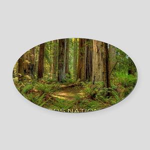 redwoods Oval Car Magnet