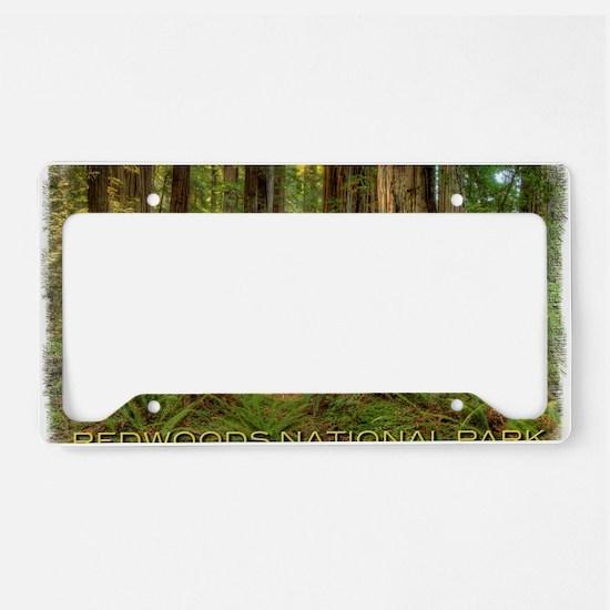 redwoods License Plate Holder