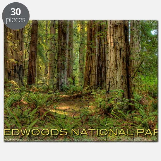 redwoods Puzzle