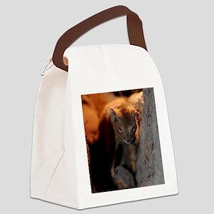 Squirrel Canvas Lunch Bag
