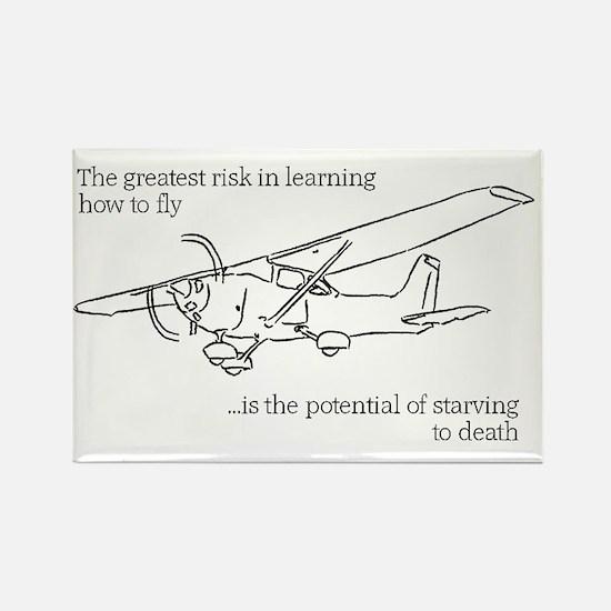 Flying Risk 2 Rectangle Magnet