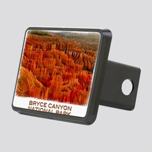 Bryce2 Rectangular Hitch Cover