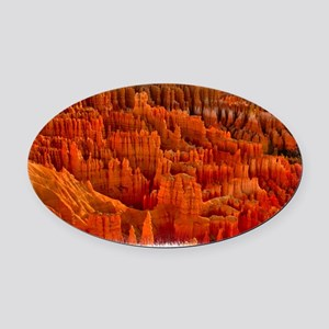 Bryce2 Oval Car Magnet
