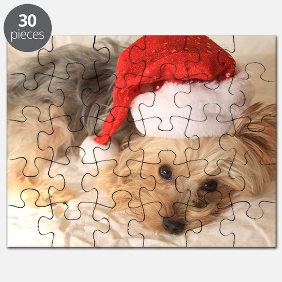 Izzycard2010sq Puzzle