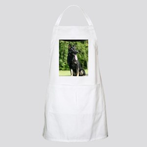 cp_vert_gsd_cover Apron