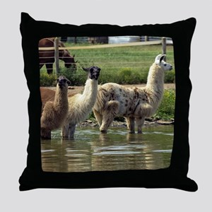 llamatrio1_ipad Throw Pillow