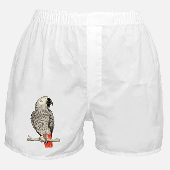 African Grey in Pencil Boxer Shorts