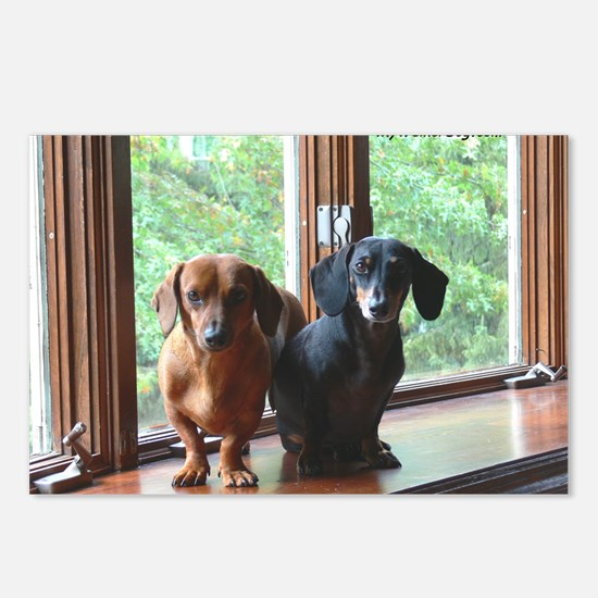 dasie and harley window s Postcards (Package of 8)
