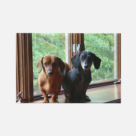 dasie and harley window seat Rectangle Magnet