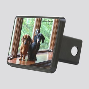 dasie and harley window se Rectangular Hitch Cover
