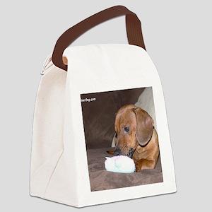 junior xmas toy Canvas Lunch Bag