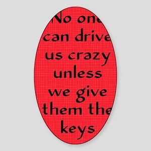 driveuscrazy_journal Sticker (Oval)