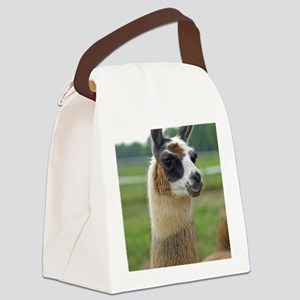 llama2_lp Canvas Lunch Bag
