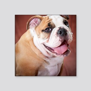 "BulldogPuppy Square Sticker 3"" x 3"""