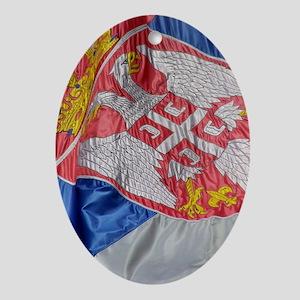 Iphone4SliderCase_Flag Oval Ornament