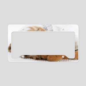 shih tzu greeting License Plate Holder